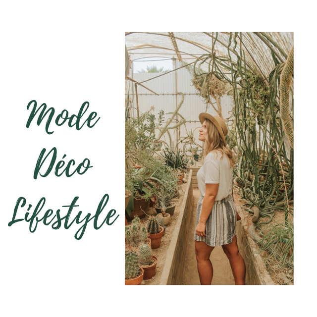 influenceurs mode/déco/lifestyle